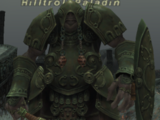 Hilltroll Paladin