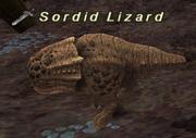 Sordid lizard