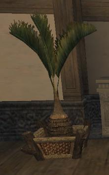 Elshimo Palm MH