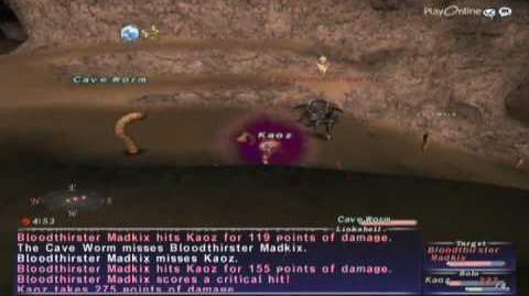 FFXI NM Saga 058 Bloodthirster Madkix vs BST solo High lvl Full Battle