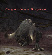 Fugacious Bugard