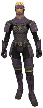 Dusk Armor Set