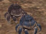 Crabauble