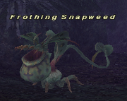 Frothing snapweed