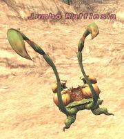 JumboRafflesia