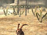 Wadi Hare