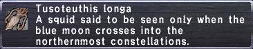 TusoteuthisLonga