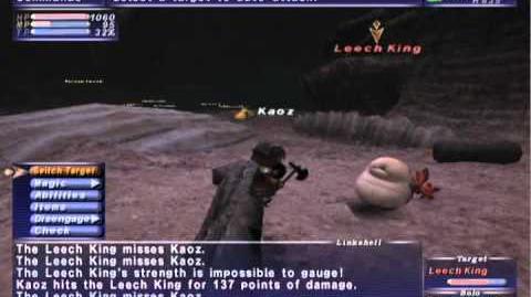FFXI NM Saga 239 Leech King vs BST Full Battle