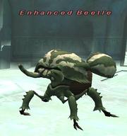 Enhanced Beetle