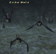 Echo Bats