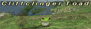 Cliffclinger Toad