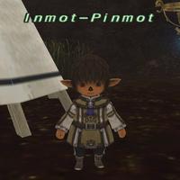 Inmot-Pinmot