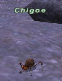 ChigoeNPC