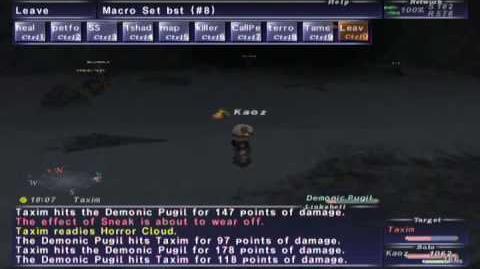 FFXI NM Saga 084 Taxim vs BST solo Full Battle