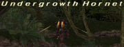 Undergrowth Hornet
