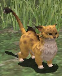 Costume (Coeurl Pup)