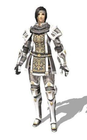 Valor armor 1 set ffxiclopedia fandom powered by wikia relicpld a hume in full paladin relic armor publicscrutiny Gallery