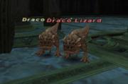 Draco Lizard