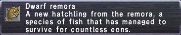 Dwarf-remora