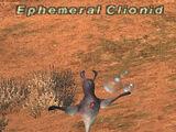 Ephemeral Clionid