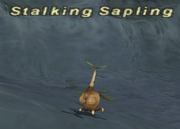 Stalkingsapling