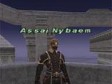 Assai Nybaem