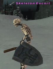 Skeleton Escort