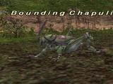 Bounding Chapuli