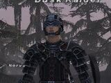 Dusk Raider