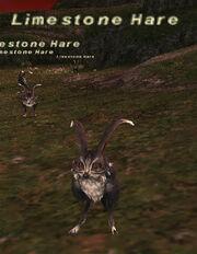 Limestone Hare