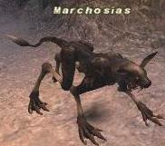 Marchosias