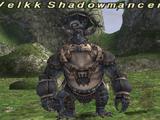 Velkk Shadowmancer