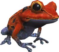 Vermilion Toad