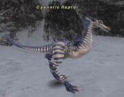 Cyanotic Raptor