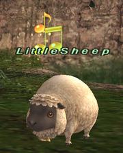 LittleSheep