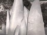 Icy Palisade