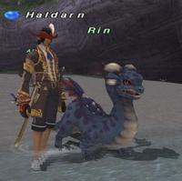 Rearing-dragonhatchling