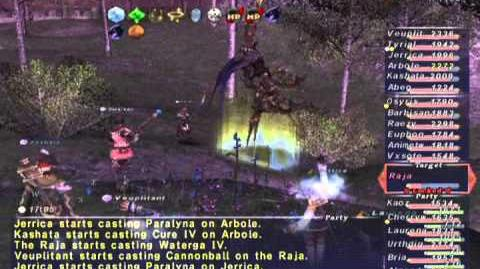FFXI NM Saga 286 Raja NM Full Battle