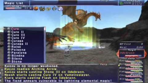 FFXI NM Saga 378 Ildebrann (Voidwatch NM) Full Battle