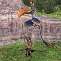 Rearing-toucalibri