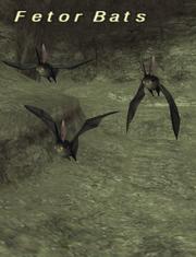 Fetor Bats