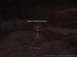 Qiqirn Mercenary