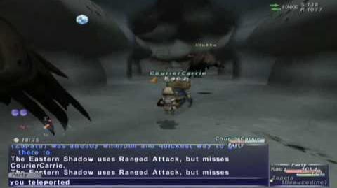 FFXI NM Saga 075 Eastern Shadow vs BST solo Full Battle