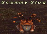 Scummy Slug