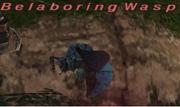 Belaboring Wasp
