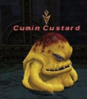 Cumin Custard