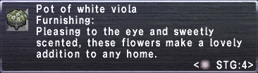 White Viola Pot