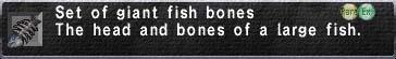 Giant Fish Bones