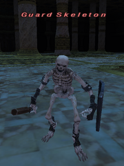 Guard Skeleton