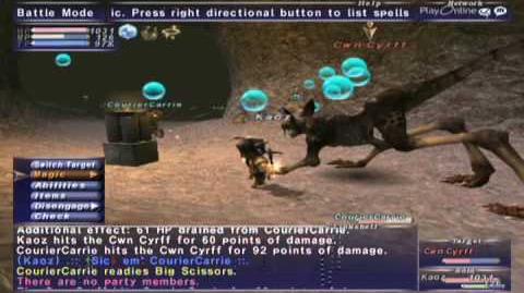 FFXI NM Saga 082 Cwn Cyrff vs BST solo Full Battle